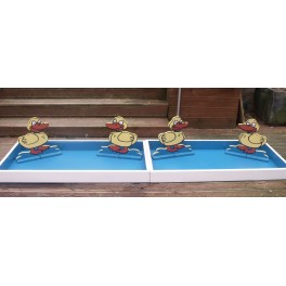 Show Jump Tray With Ducks